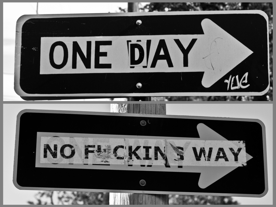 "Two One Way Signs that have both had stickers applied to them so that they read ""one day"" and ""no fucking way"""