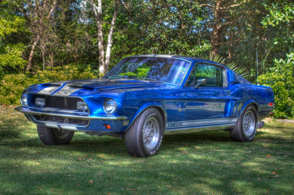 a blue 1965 Shelby Mustang GT 350 at the Camellia Classic Car Show in Bellingrath Gardens, Theodore, Alabama