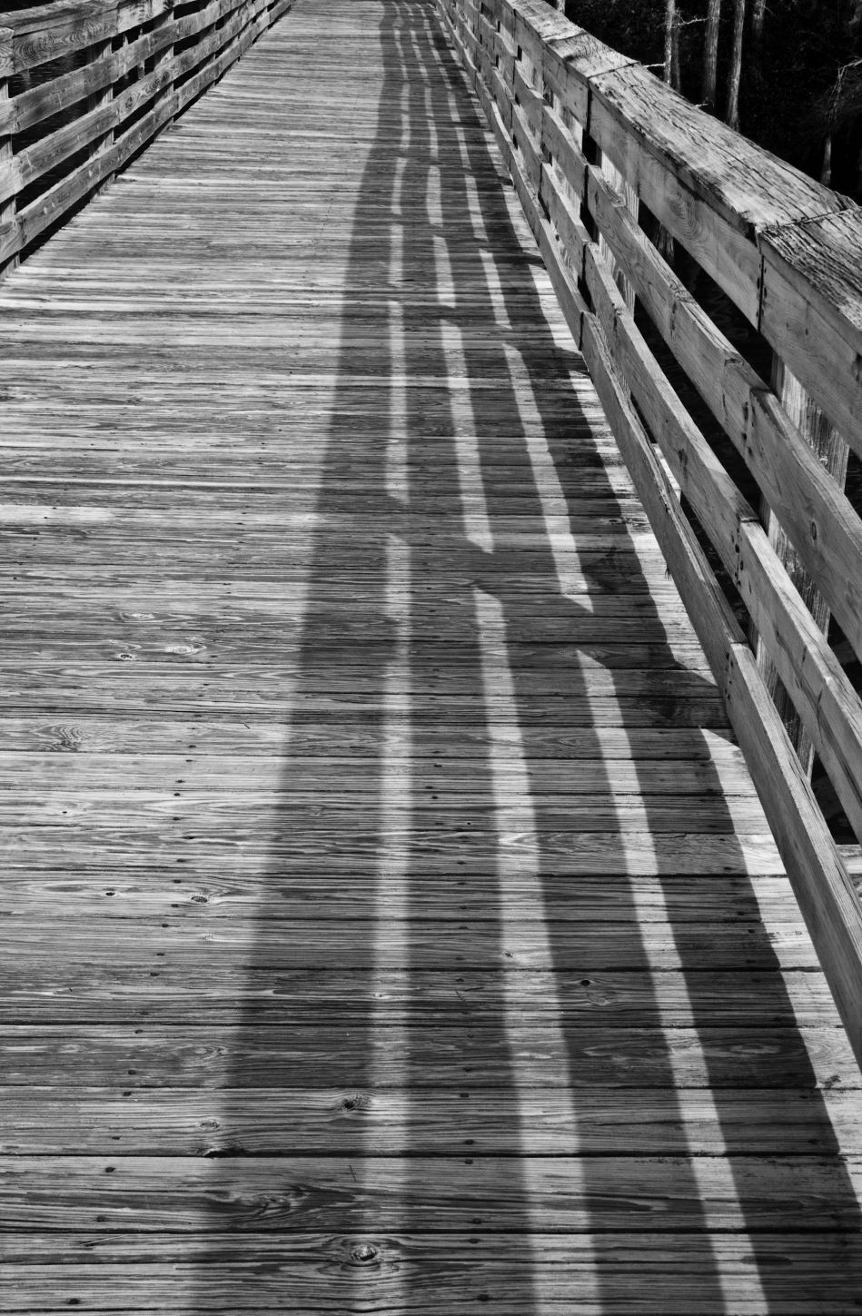 A shadow on a wooden bridge in Bellingrath Gardens, Theodore, Alabama