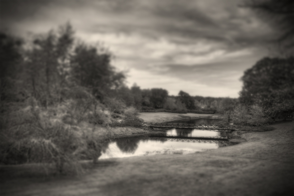 An HDR Tilt-Shift picture of a bridge in Bellingrath Gardens, Theodore, AL
