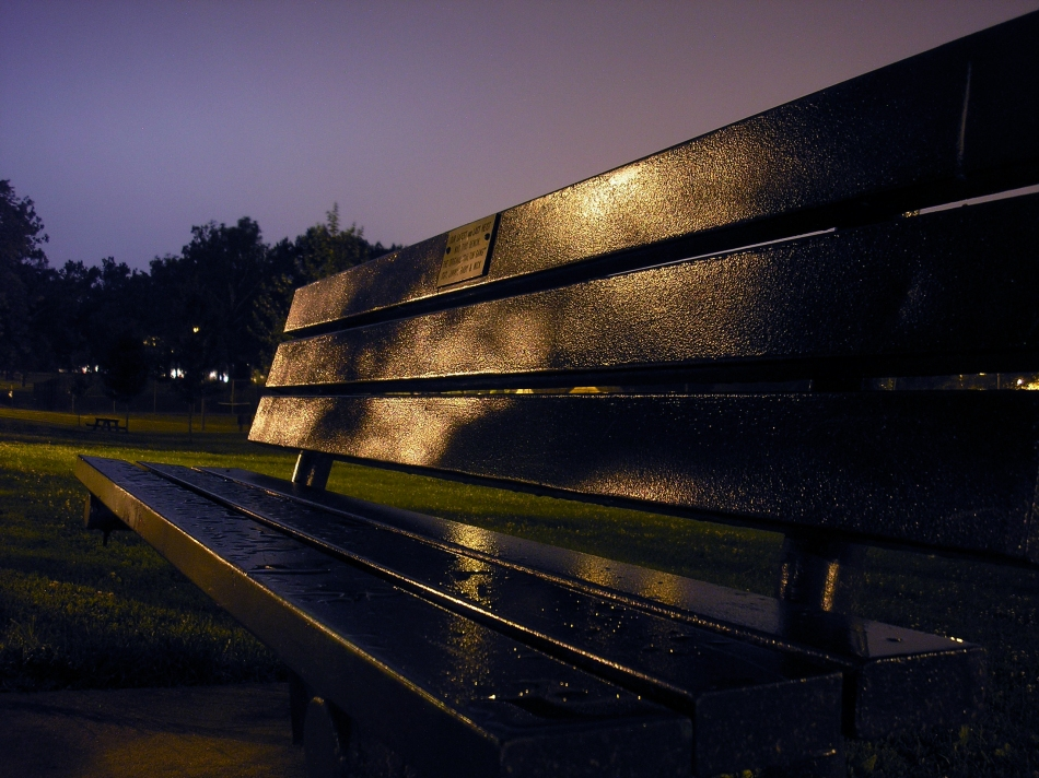 A Park Bench in Francis Park in South Saint Louis, MO.
