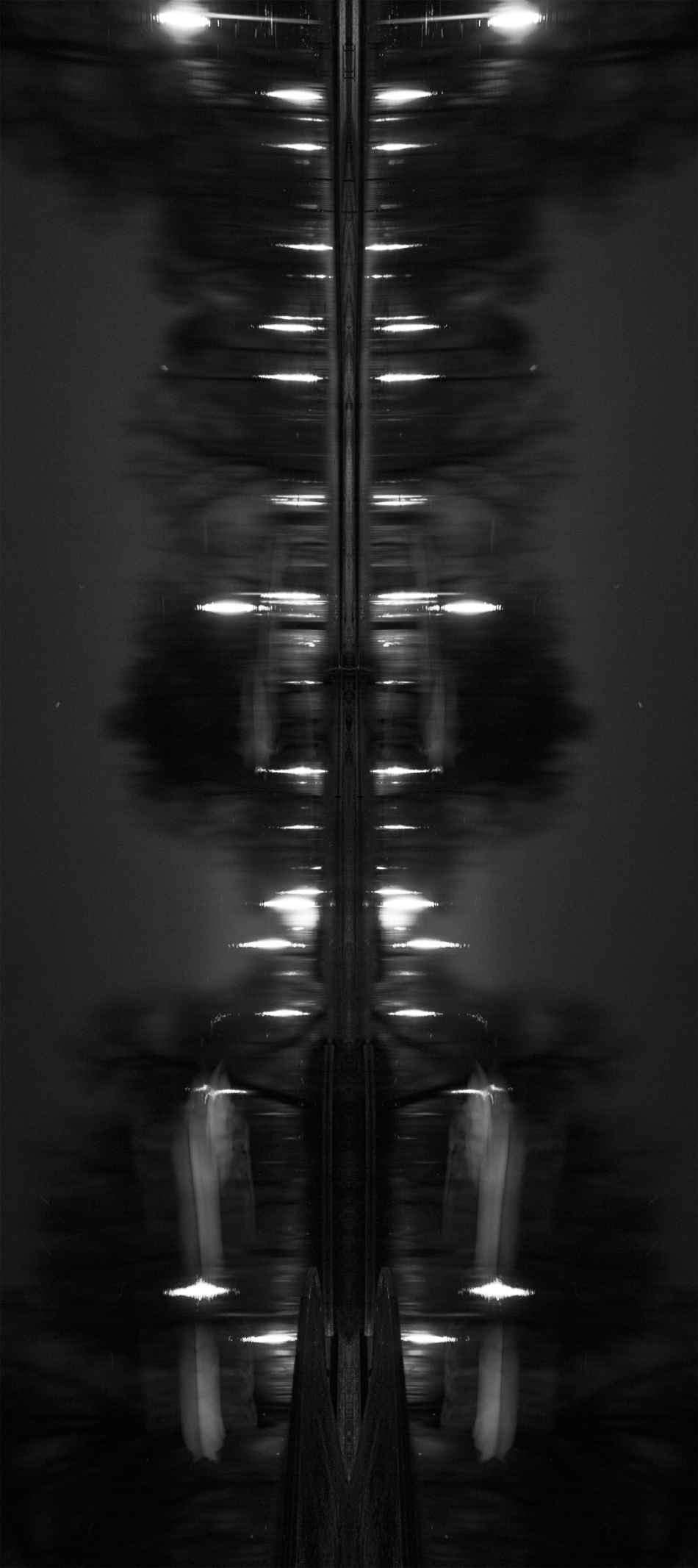 An abstract black and white photograph that is the mirror image of swans on a pond at night. Photo by Braden Piper bgpiperphotography.com