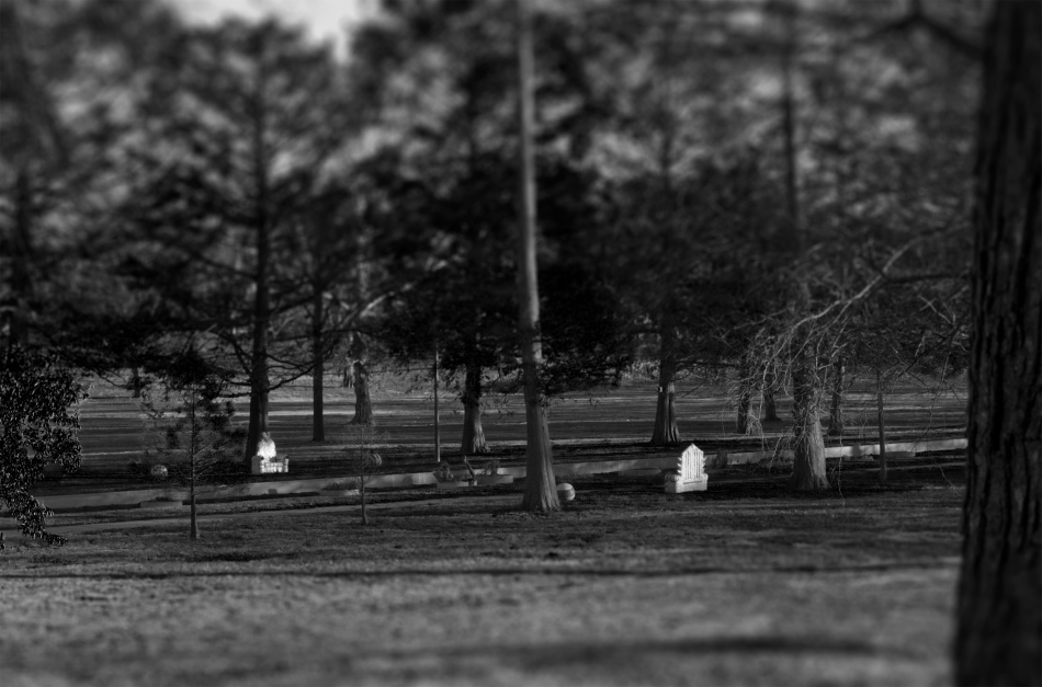 A black and white image of two stone thrones facing each other in Francis Park in St. Louis, MO. Photo by Braden Piper bgpiperphotography.com