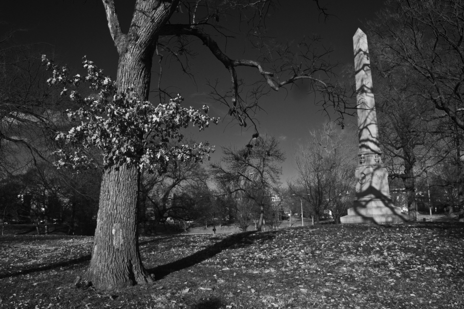 A black and white image of a tree and an obelisk in Benton Park, St. Louis, MO. Photo by Braden Piper bgpiperphotography.com