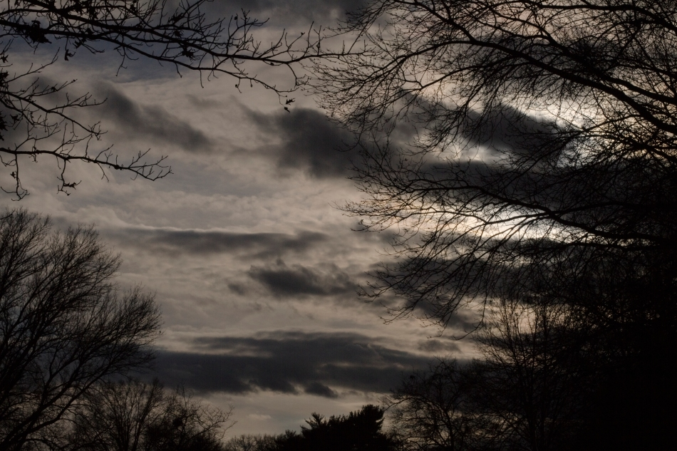 An image of the sky taken from Benton Park in St. Louis, MO